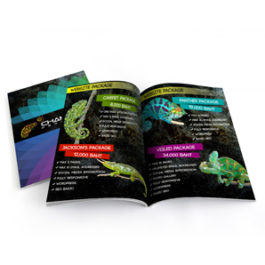 Magazine Catalog Printing Design Chameleon Production Koh Samui Thailand