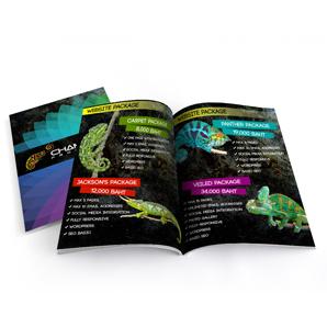 Magazine Catalog Printing Design Chameleon Production Koh Samui Thailand