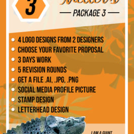 logo design package three, chameleon production, koh samui, thailand