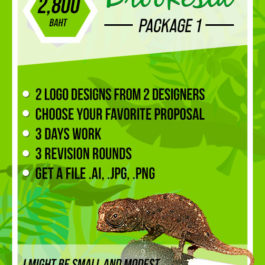 logo design package one