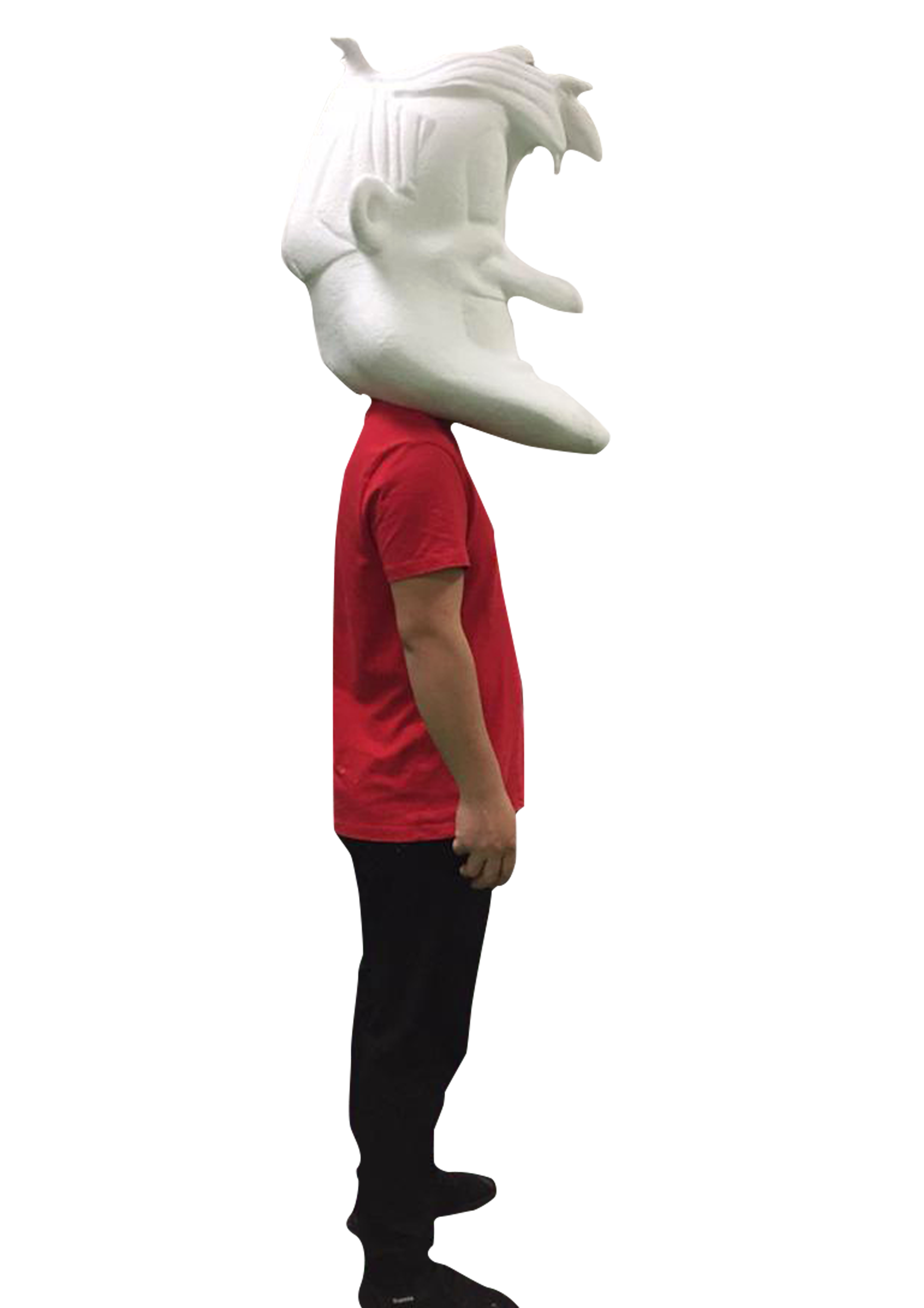Man standing with mascot head